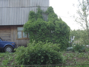 Отличный дом на даче